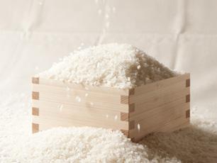 香川県の専門農家・谷岡農園から直送の「さぬき米」コシヒカリ