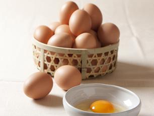 ブランド卵「たまご物語」